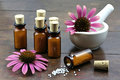 Homeopathic echinacea pills Royalty Free Stock Photo