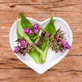 Homeopathy and cooking with comfrey Royalty Free Stock Photo