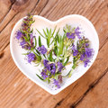Homeopathy and cooking with hyssop Royalty Free Stock Photo