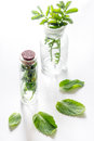 Homeopathy. Medicinal herbs in glass on white background Royalty Free Stock Photo