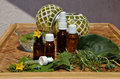 Homeopathy remedies bottles of with fresh remedy plants on wooden table and green glass balls in a background Royalty Free Stock Photo