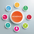 Homepage infographic piad design on the grey background eps file Royalty Free Stock Image