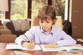 Homework little schoolboy writing his at home Royalty Free Stock Photos