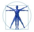 Homme vitruvian de tableau humain d'isolement Photos libres de droits