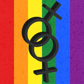 Homosexual love icon female on rainbow background Royalty Free Stock Photo