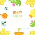 Honey background. Natural organic elements.
