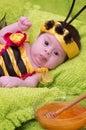 Honey Bee Baby Royalty Free Stock Photo
