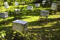 Honey Bee Farm Boxes Stock Photo