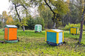 Honey bee hives in autumnal apple garden Royalty Free Stock Photo