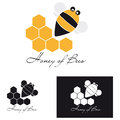 Honey of bee vector illustration a cute hive near his Stock Photos