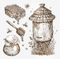 Honey, beekeeping, bees. Collection vintage sketch vector illustration