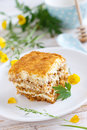 Honey cake Stock Photography