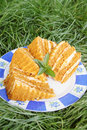 Honey cake on grass a plate with mint in the garden Royalty Free Stock Photos