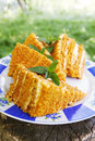 Honey cake on a plate with mint in the garden Royalty Free Stock Photography
