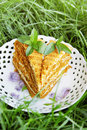 Honey cake on a plate with mint in the garden Stock Images