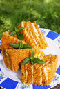 Honey cake on a plate with mint in the garden Royalty Free Stock Images