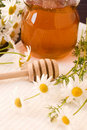 Honey and camomile Royalty Free Stock Photography