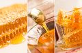 Honey collage of close up honeycombs filled with fresh and juicy dripping from the spoon to the glass bowl Stock Image