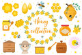 Honey collection. Beekeeping set of objects isolated on white background. Apiculture kit of design elements flat