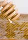 Honey comb Stock Photo