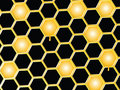 Honey comb background Stock Image