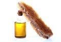 Honey comb Royalty Free Stock Photo