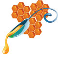 Honey drop flows down from spoon Stock Photography