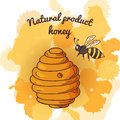 Honey element in hand drawn style natural product apiary isolated symbol vector illustration Stock Photos
