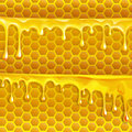 Honey flowing motion honey trickling down isolated vector in Stock Photo