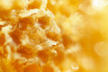 Honey in the Honeycomb background Royalty Free Stock Photo