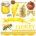 Honey, Honeycomb, Honey Bee. S...