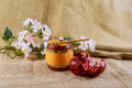 Honey jar and fresh apples with pomegranate over bokeh background Royalty Free Stock Photo