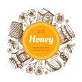 Honey label. Natural farm honey badge with bee and honeycomb. Vintage hand drawn vector illustration