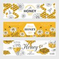 Honey labels. Honeycomb and bees vintage sketch background, hand drawn organic food retro design. Vector honey graphic