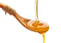 Honey pouring into wooden spoon Royalty Free Stock Photo