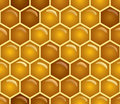 Honey seamless Stock Photography