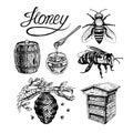 Honey vintage vector set