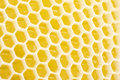 Honeycomb Royalty Free Stock Photography