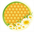 Honeycomb background Royalty Free Stock Photography