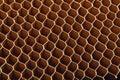 honeycomb cells of cardboard stiffening rib background Royalty Free Stock Photo