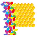 Honeycomb and flowers. Royalty Free Stock Photography