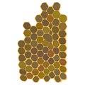 Honeycomb hexagonal honeycombs