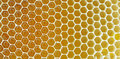 Honeycomb isolated Stock Images