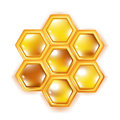 Honeycomb isolated on white Royalty Free Stock Photos