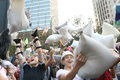 Hong kong intl pillow fight international in Stock Photography