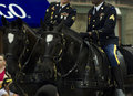 Honor guard members of military on horseback Stock Images