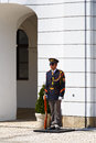 Honour guard. Royalty Free Stock Photo