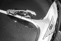 Hood ornament car of a jaguar jaguar in the jump berlin germany may black and white th oldtimer day berlin brandenburg Royalty Free Stock Image