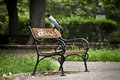 Hooded Crow on a bench Royalty Free Stock Image