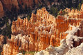 Hoodoos in bryce canyon national park red or mushroom shaped rocks eroded by the elements utah Royalty Free Stock Images